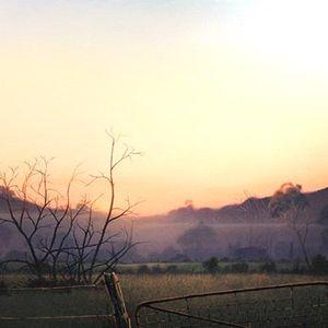 Far Folded Mists 4