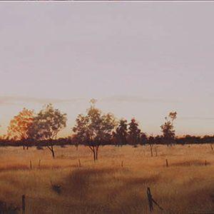 Nightfall On Barkley Plains
