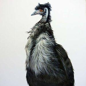 Banka Banka Emu