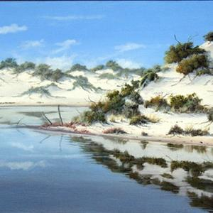 Estuary sand dunes