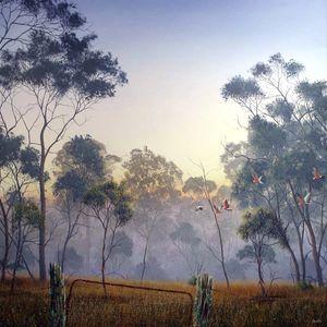 Yallakool Dawn 2