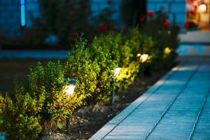 Solar Lighting for Walkway