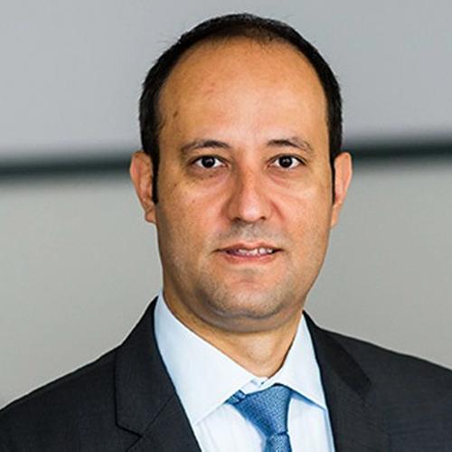 Prof. Dr. Serden Ozcan