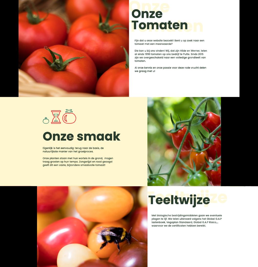 tomaten-example