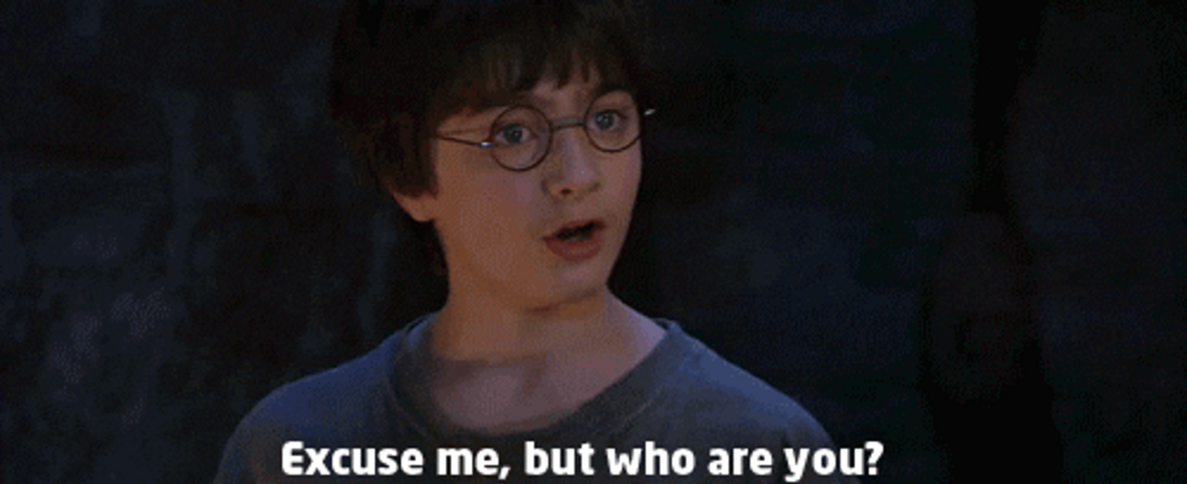 """An image of Harry Potter asking """"Excuse me, but who are you?"""""""