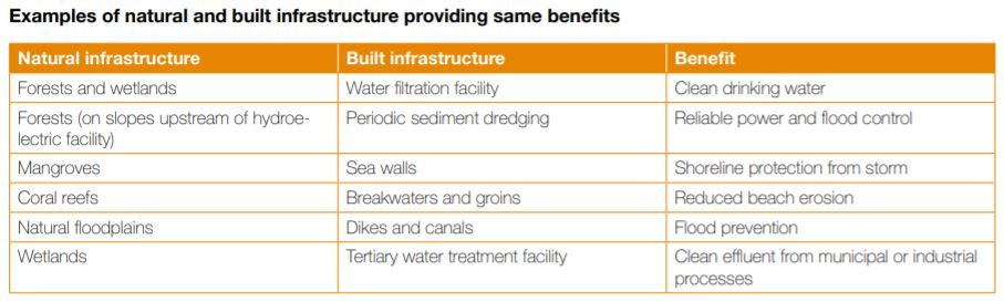 Examples of natural and built infrastructure that provide similar benefits (Source: WISE-UP)