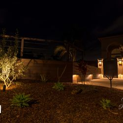 Night Picture Image 1