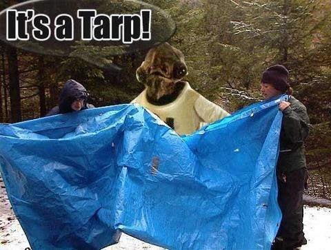 admiral-ackbar-its-a-tarp