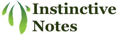 Instinctive Notes logo