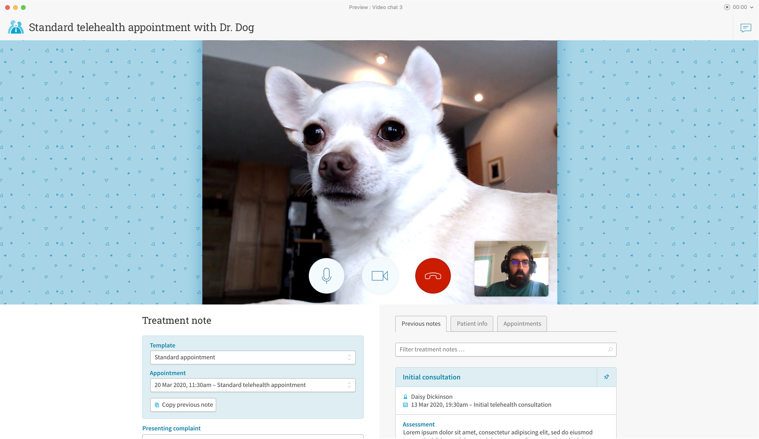 A screenshot of Cliniko's upcoming telehealth feature, showing Dr. Dog on a video appointment with one of our developers