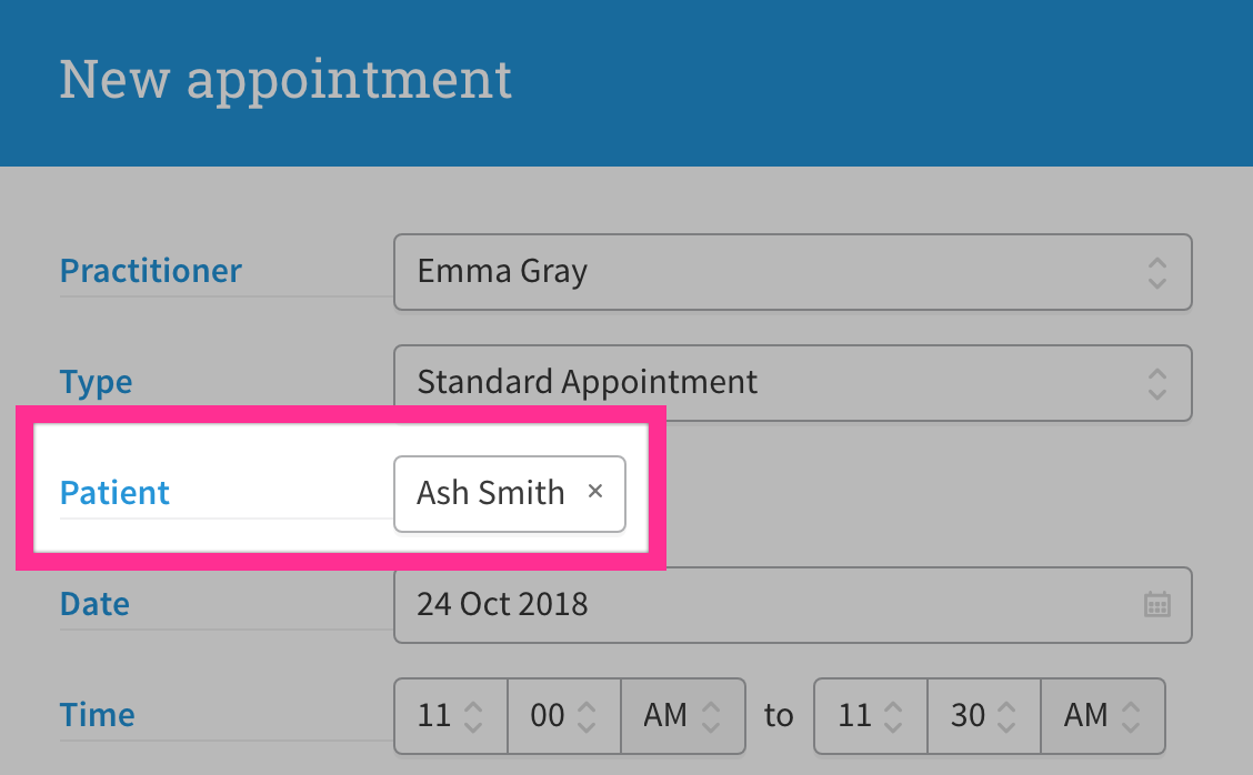 New appointment user interface displaying patient/client name