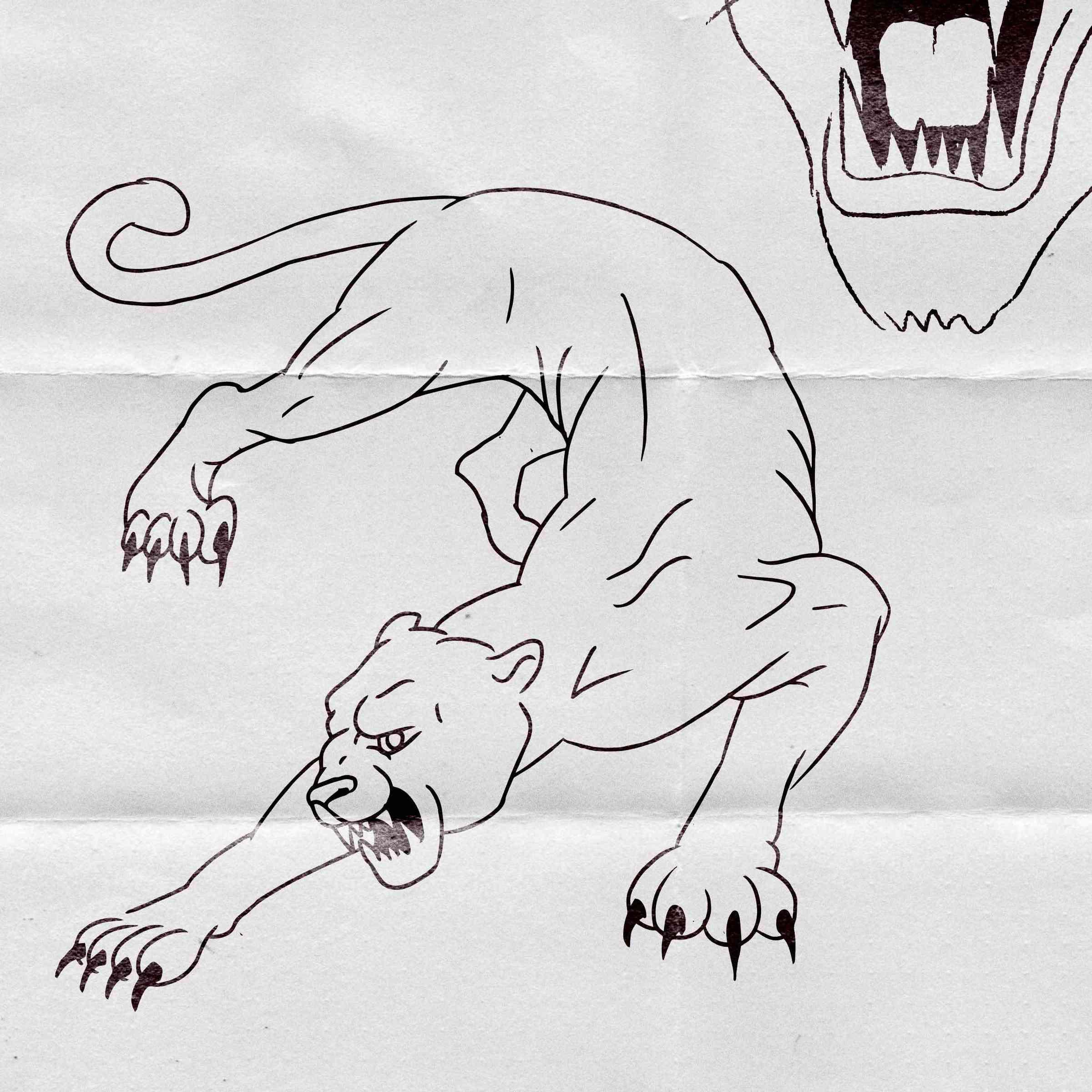 Sketch for PUMA.