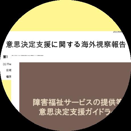 意思決定支援実践のための 総合プログラム開発