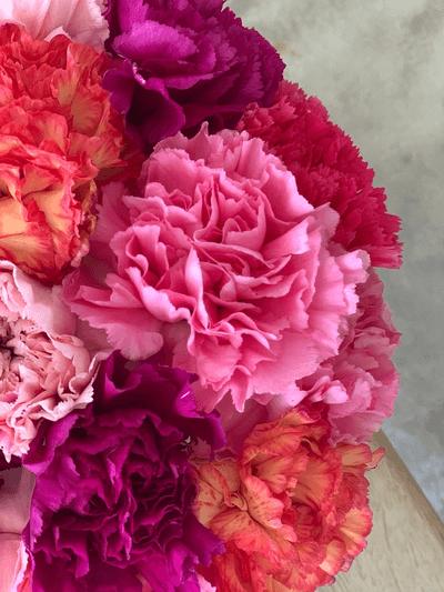 Bjørvika Blomster
