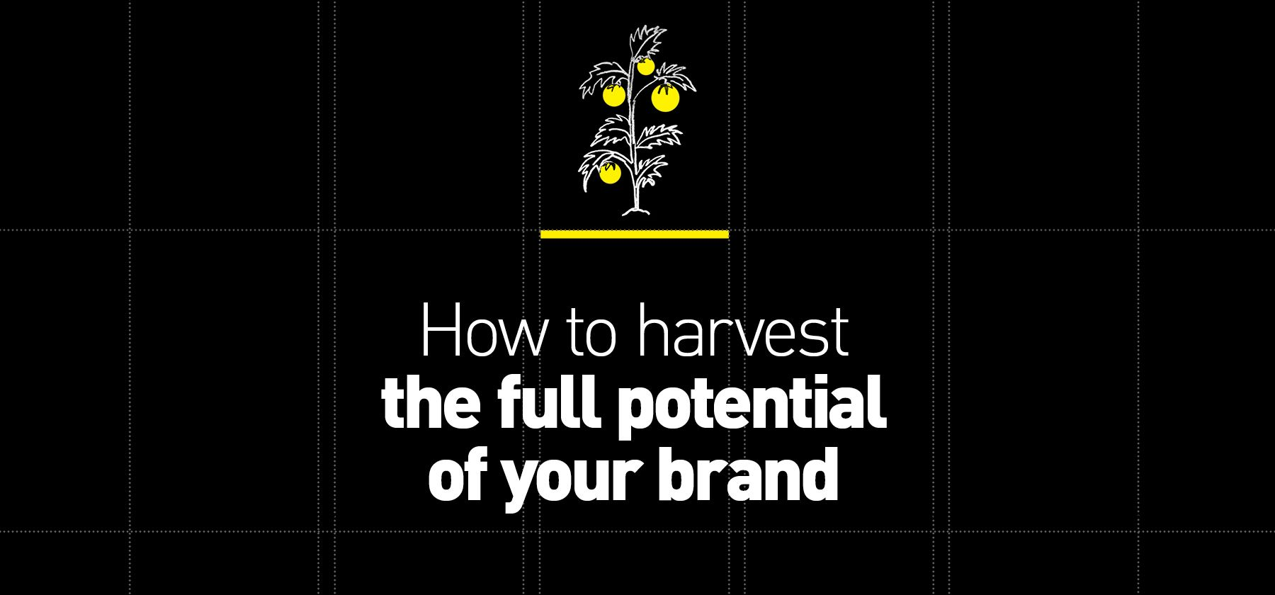 How to harvest the full potential of your brand