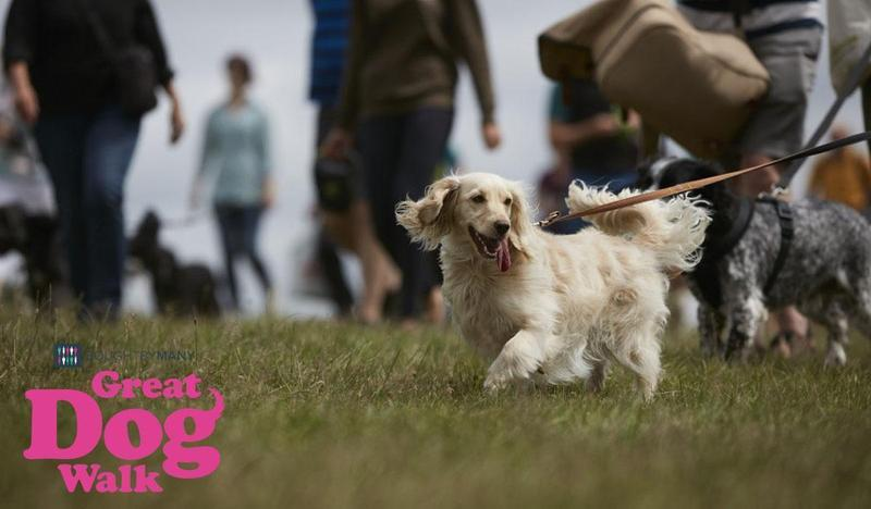 Free tickets to the Great Dog Walk