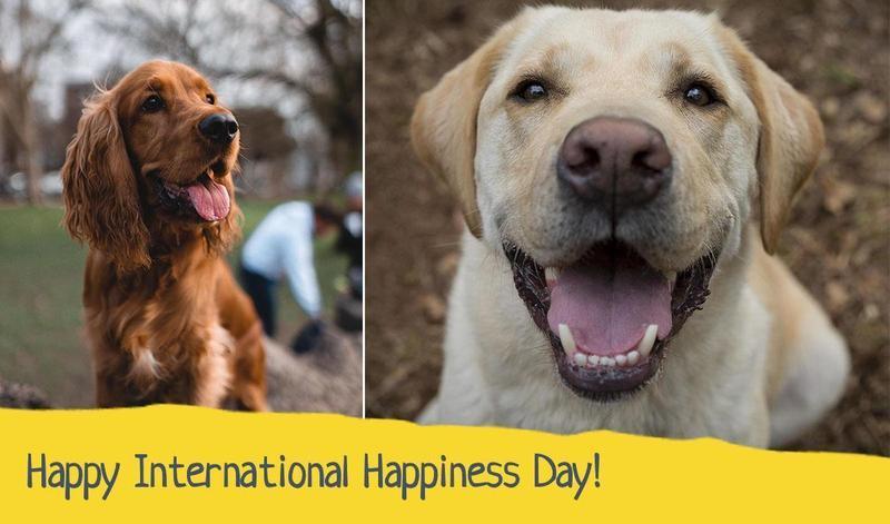 Happy International Happiness Day!