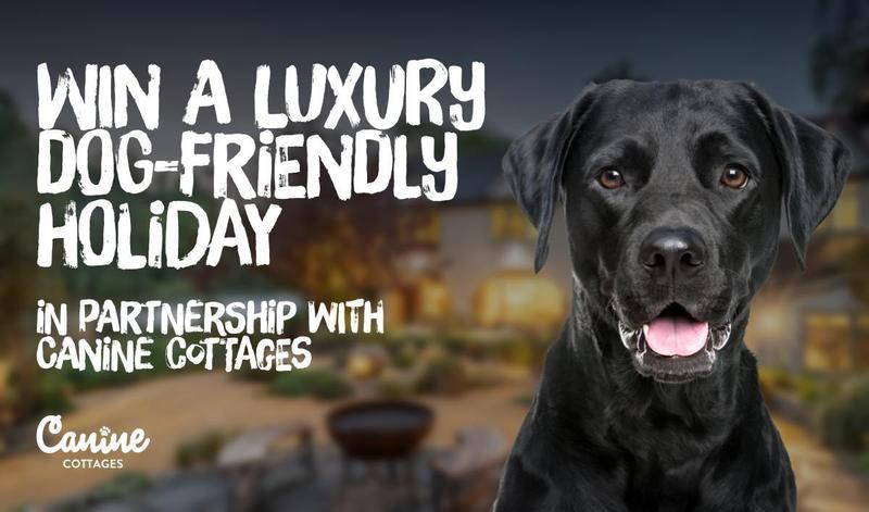 Canine Cottages giveaway - £500 up for grabs!