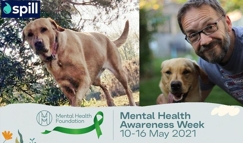 Dogs and Mental Wellbeing: Ask a Therapist