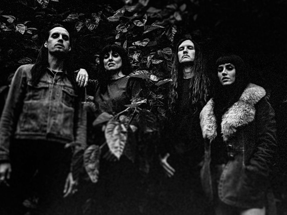 Four members of Drug Cult are surrounded by vines and darkness looking down upon the camera.