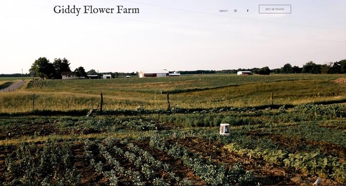 giddy flower farm