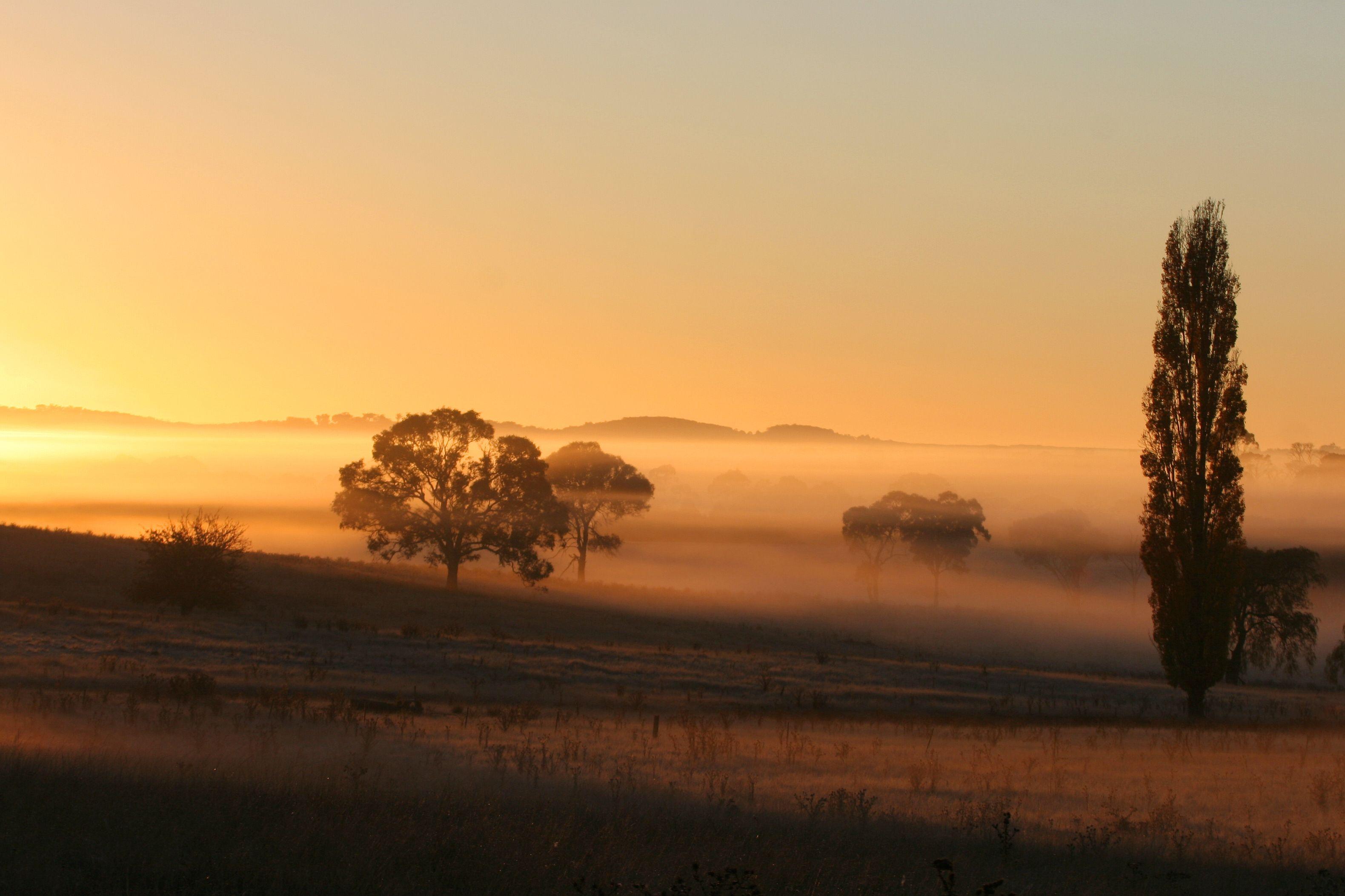 Orange NSW Australia