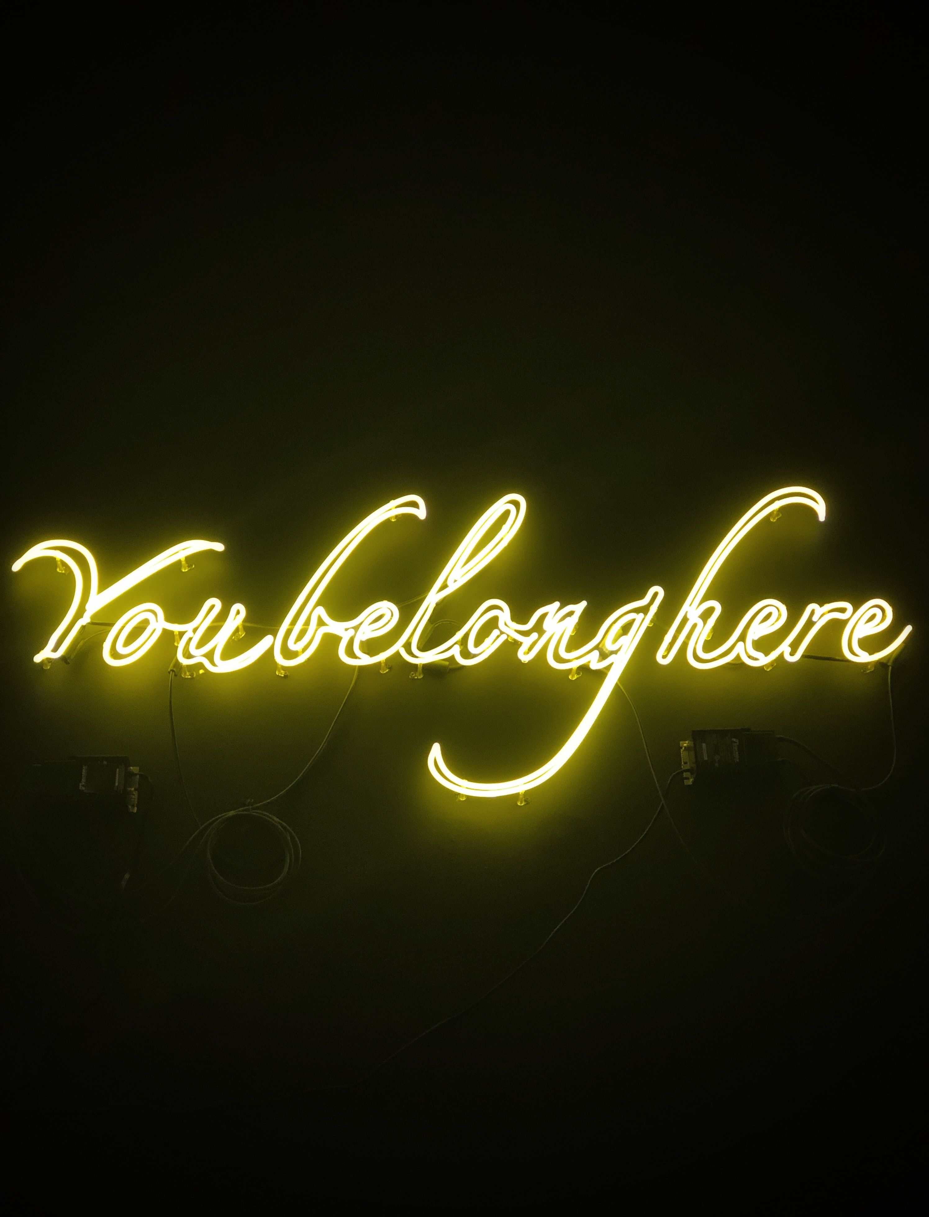 """Neon sign that reads """"you belong here""""."""