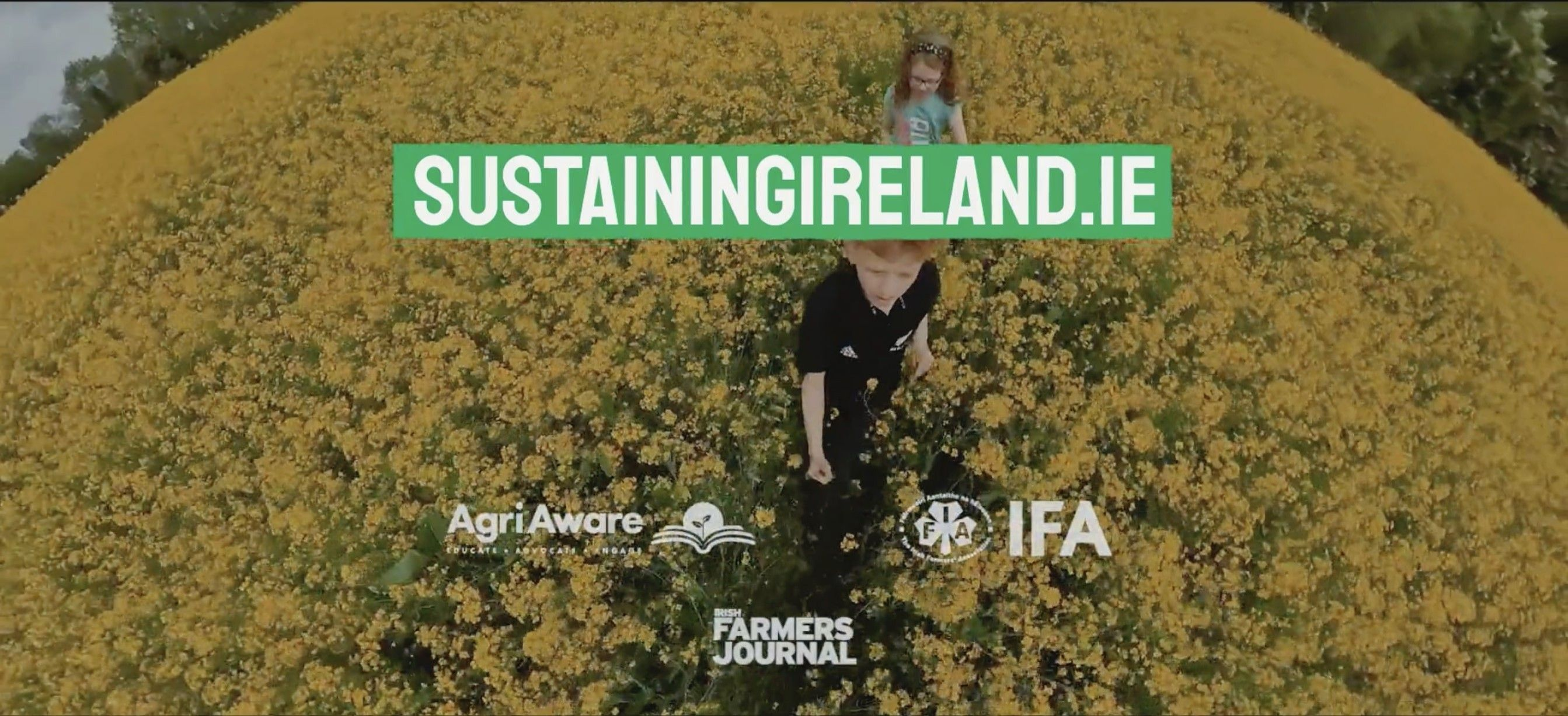 Sustaining Ireland Banner