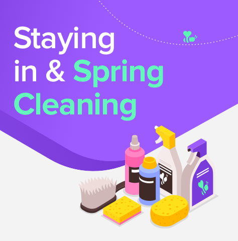 Staying in and Spring Cleaning