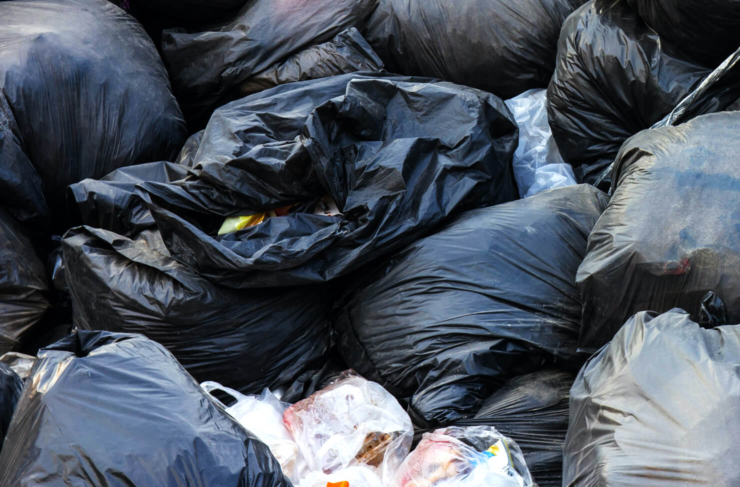 private bin collections
