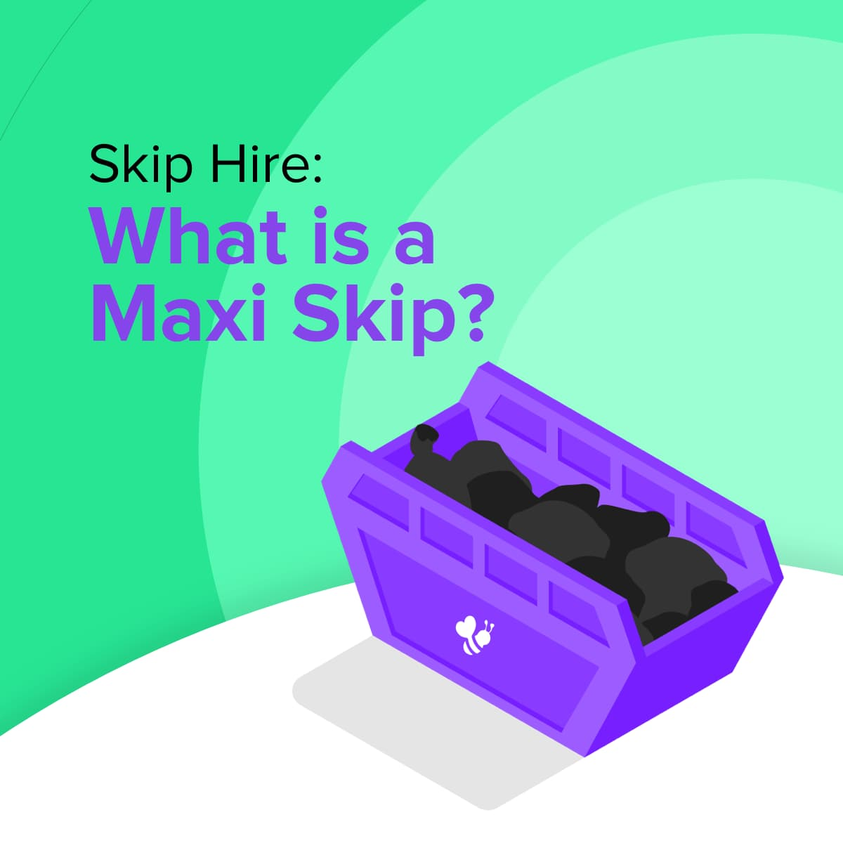 What is a Maxi Skip?