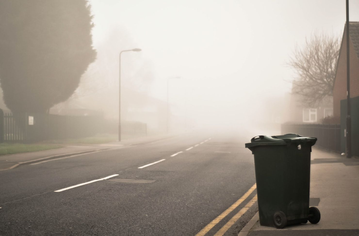 Bin collection questions answered