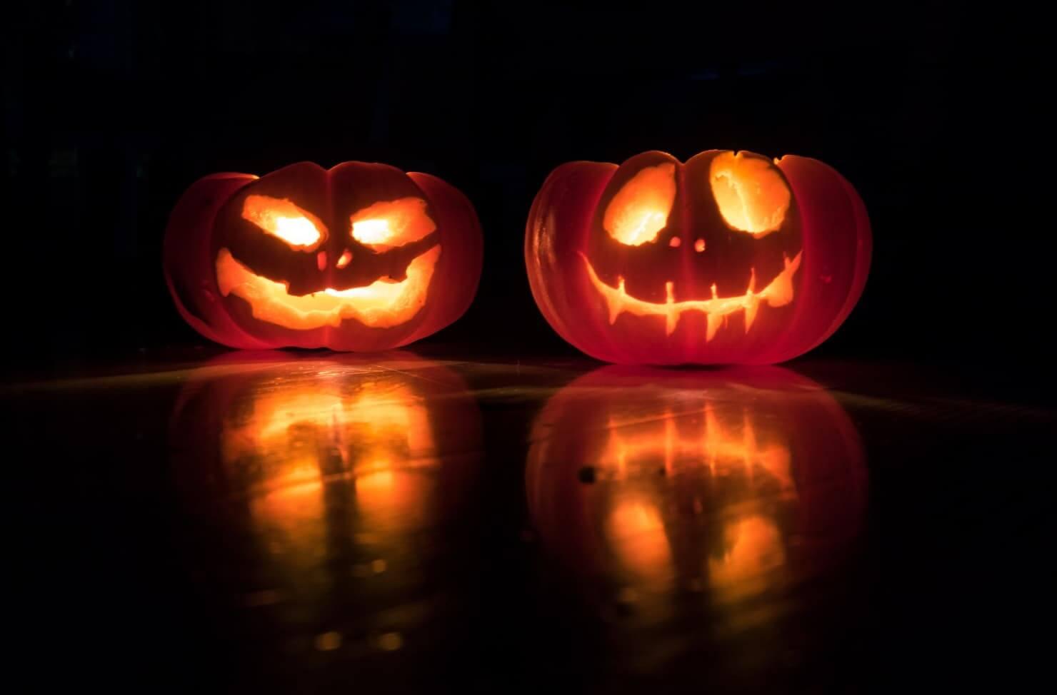 Halloween pumpkin food waste