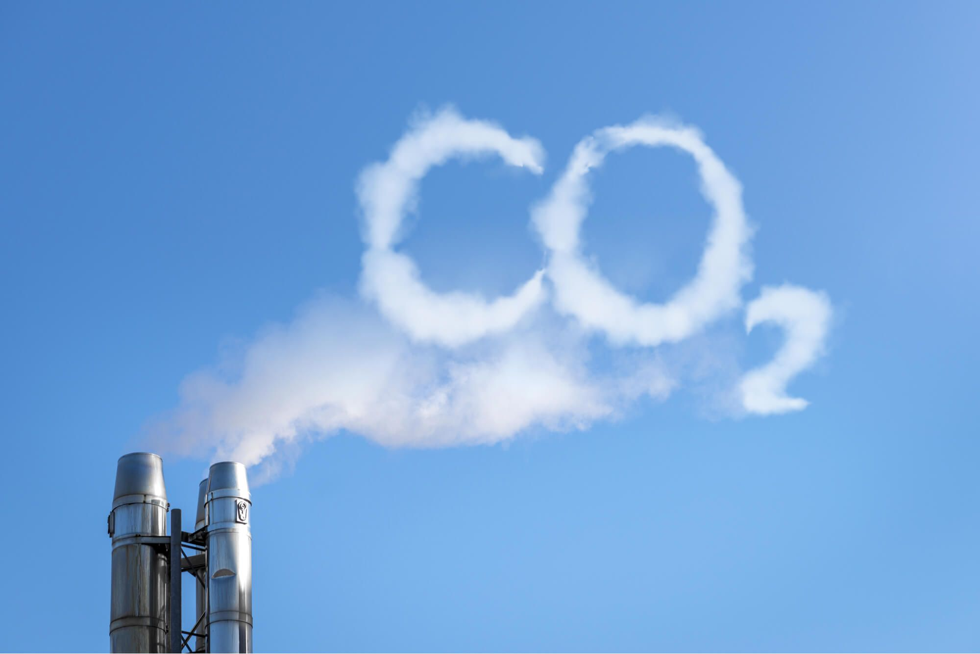 Why we are working so hard to offset our CO2 emissions