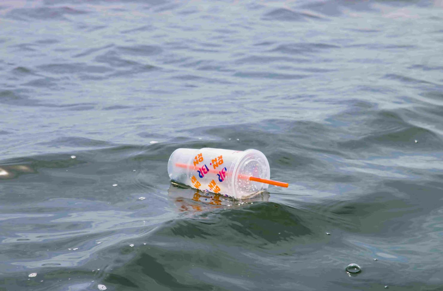 plastic floating in the sea