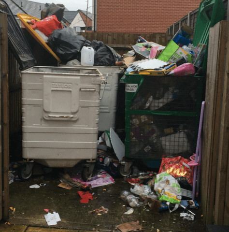 Bin Store Clearance: A 'How To' Guide