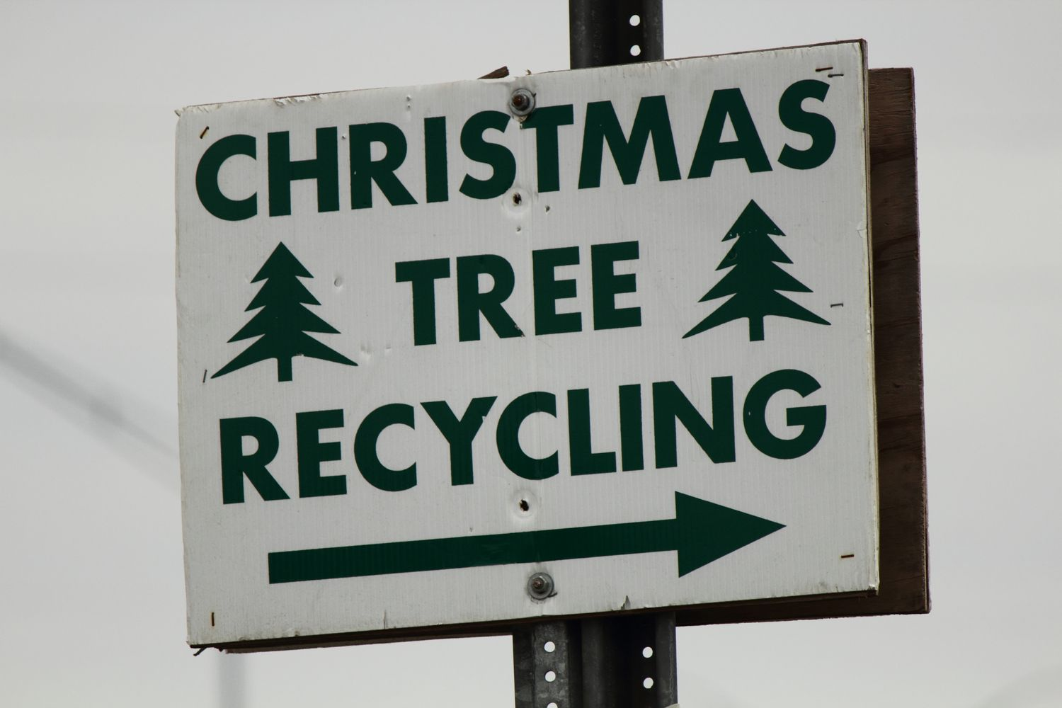 Christmas tree recycling road sign