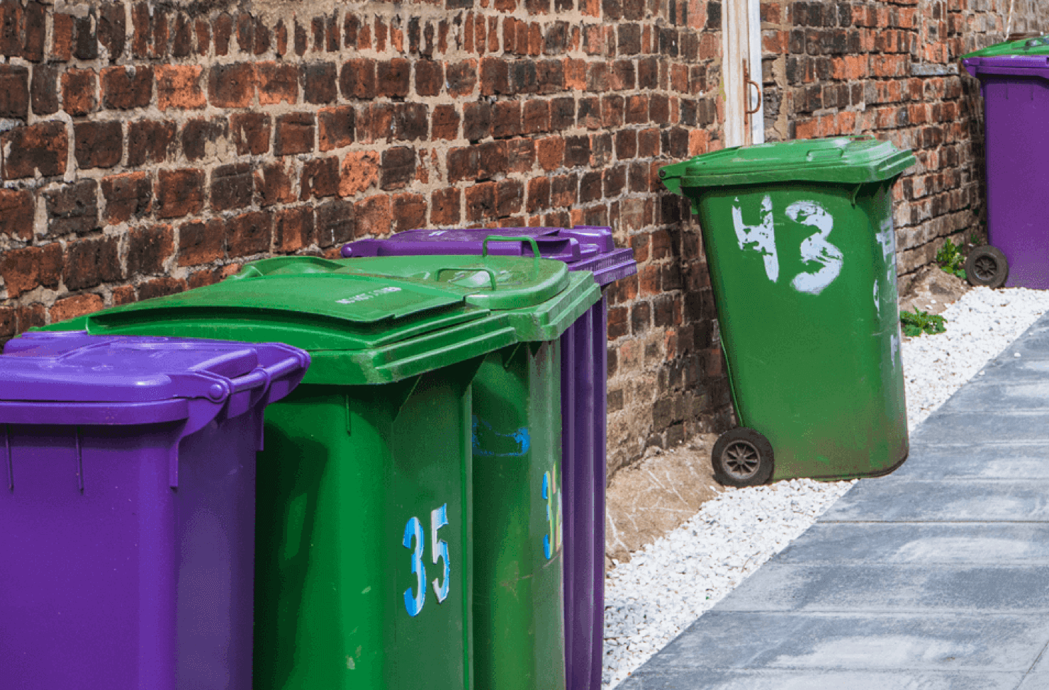 Affordable bin collections