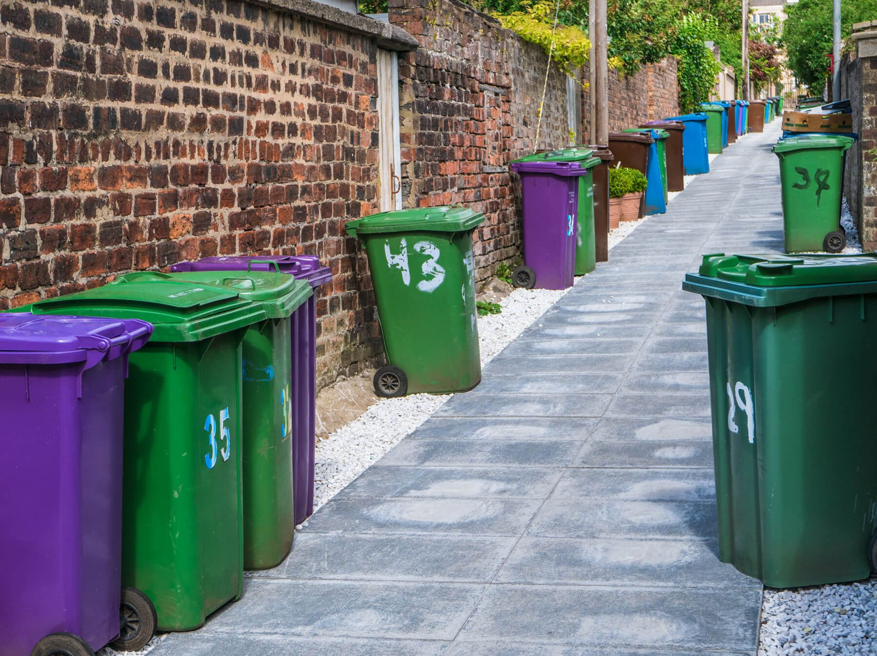 Green and purple bins street