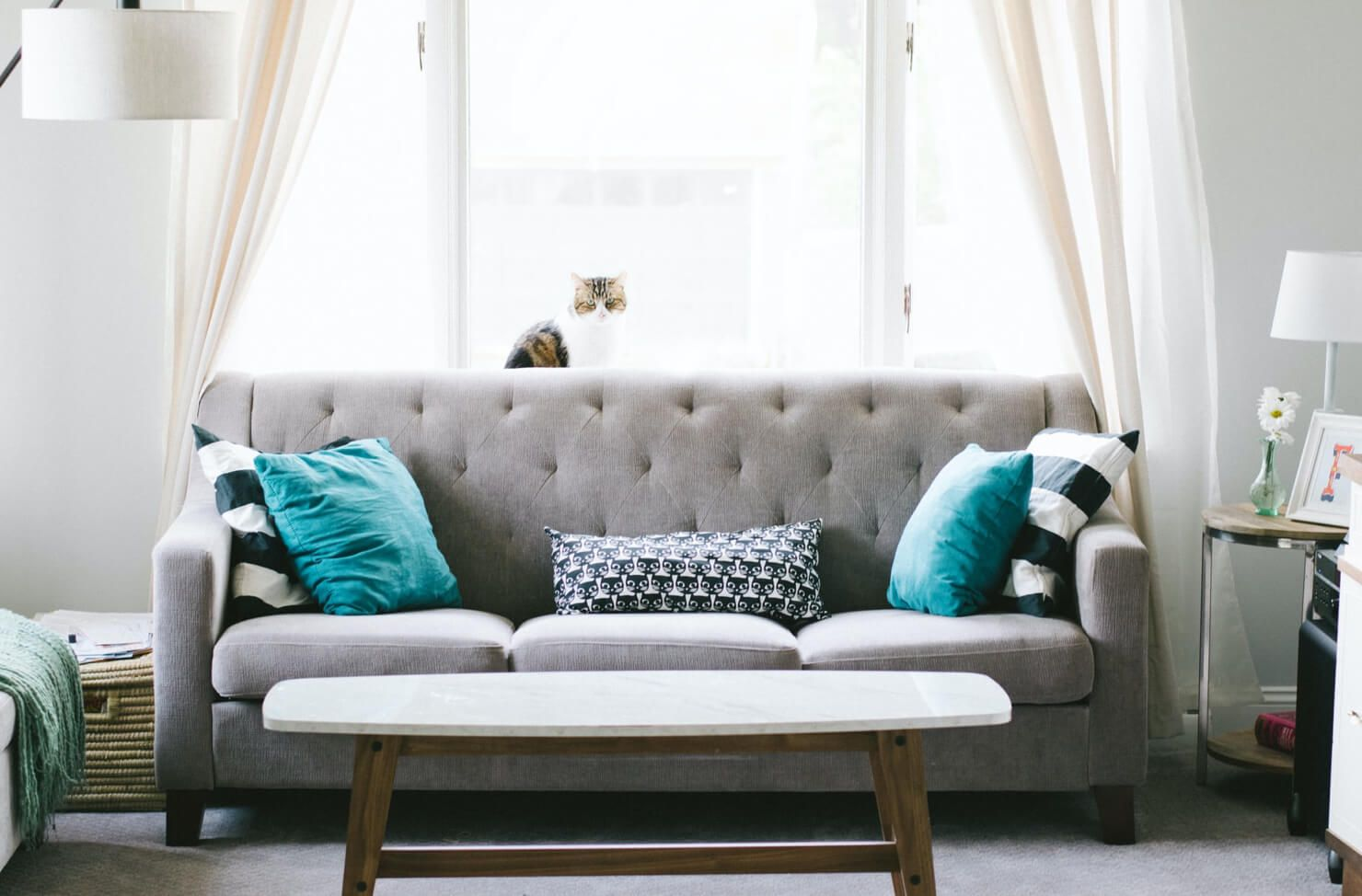old sofa removal by charities