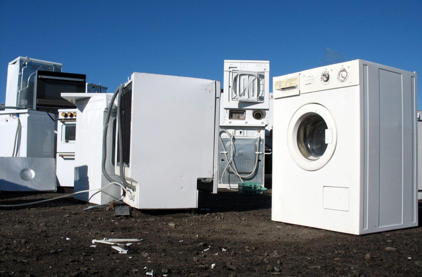 Fridge freezer, washing machine collection for free