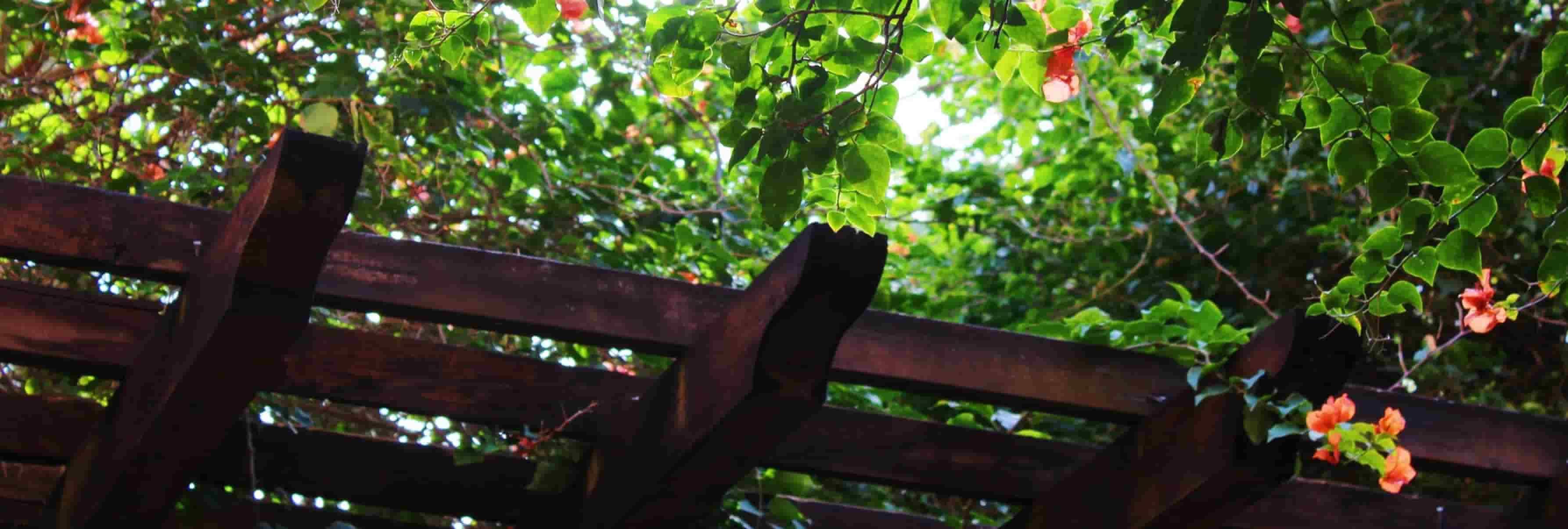 Garden Furniture Removal