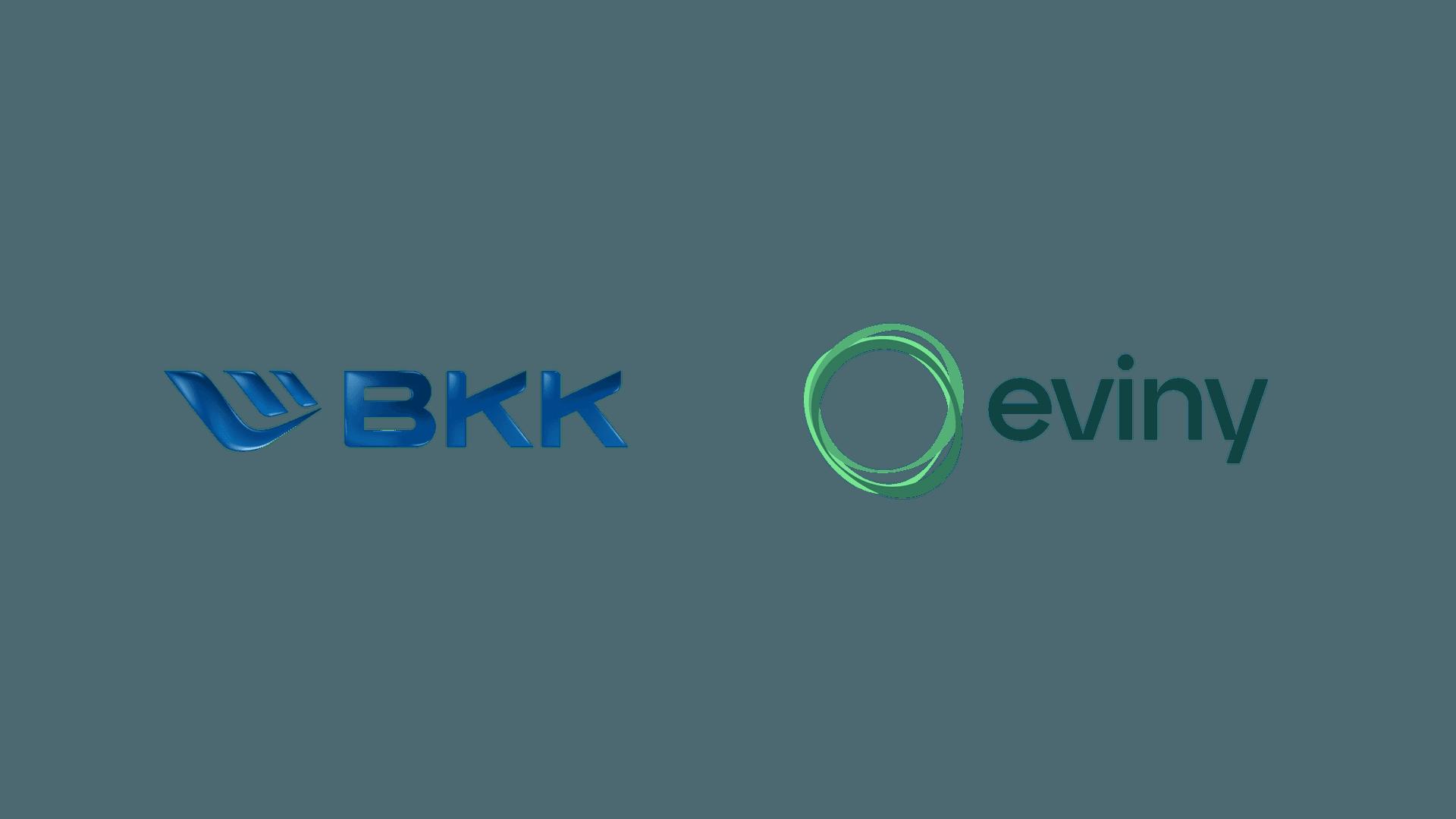 Fornybarselskapet BKK deles opp i to merkevarer. Nettselskapet skal fortsatt hete BKK, mens den øvrige delen av konsernet skifter navn til Eviny.