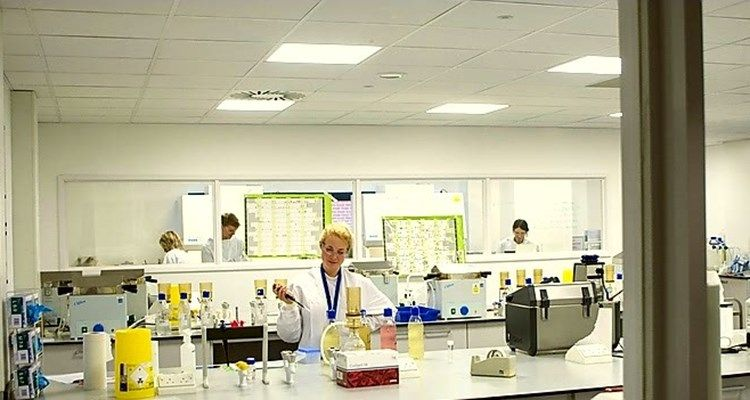 Lab Technician working in the lab