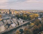 Lutte contre les nuisibles à Namur