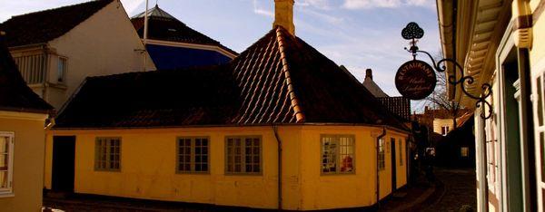 Skadedyrsbekæmpelse i Odense - en opgave for Anticimex
