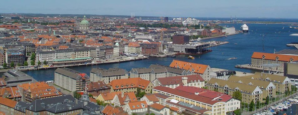 Skadedyrsbekæmpelse i København - det klarer Anticimex