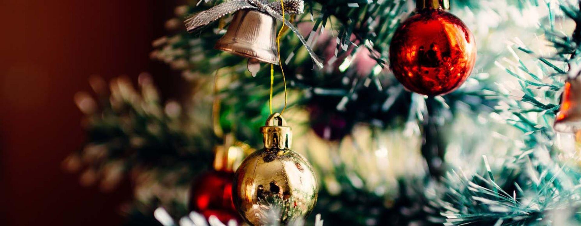 Juletræet med sin pynt og mange insekter - Anticimex