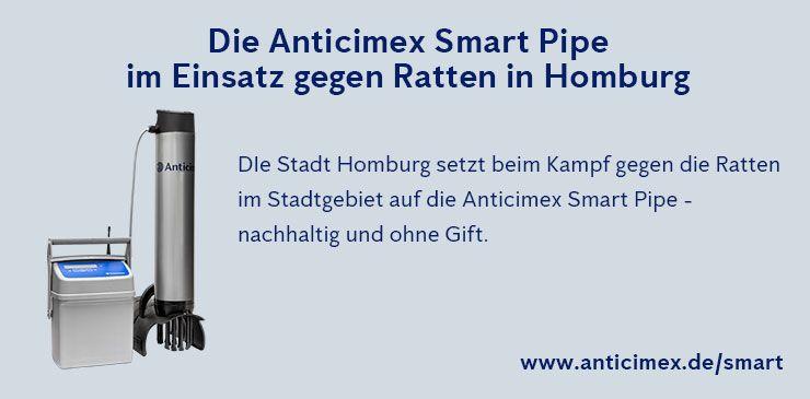 Anticimex Smart Pipe Rattenbekämpfung Homburg