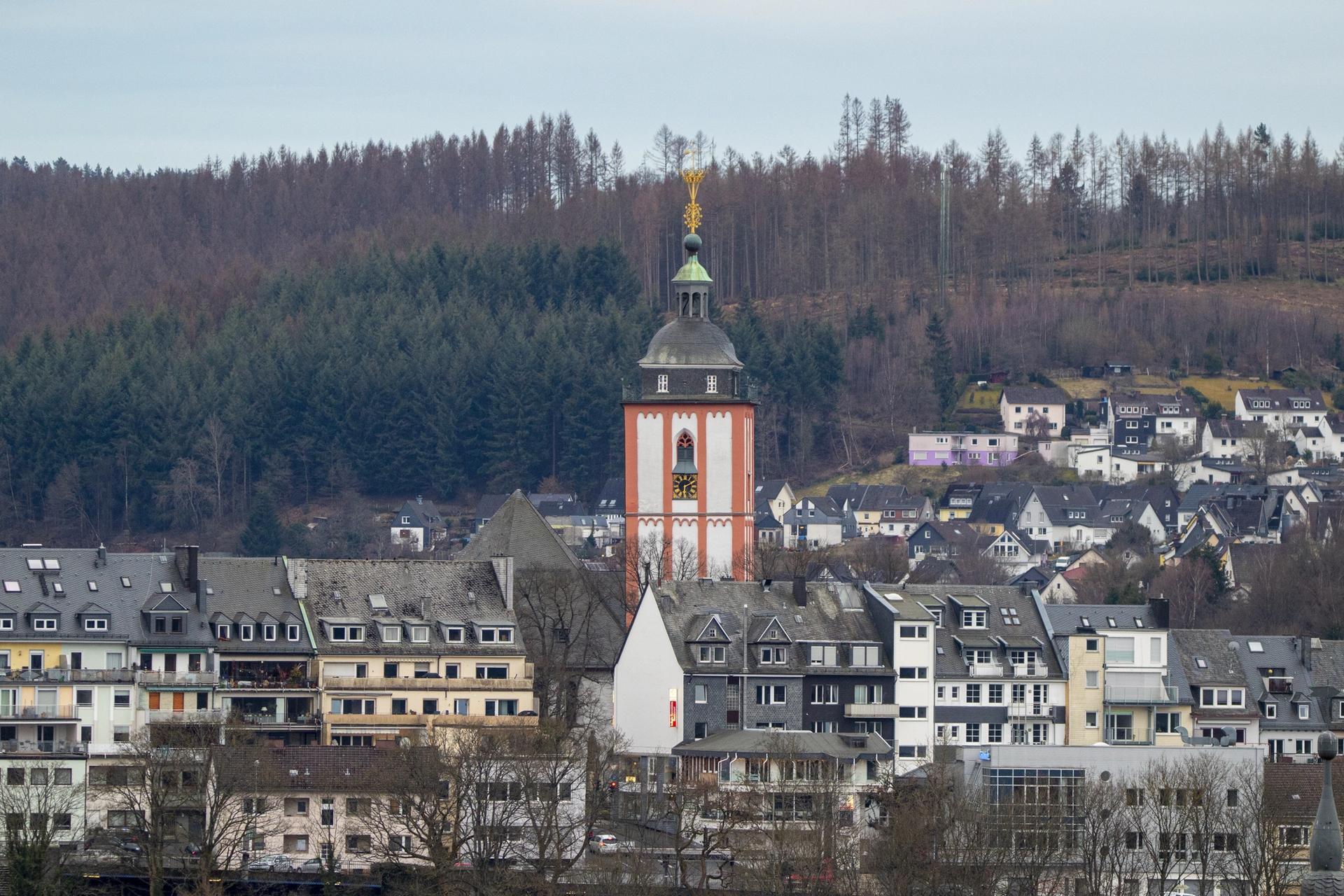 Anticimex Kammerjäger in Siegen